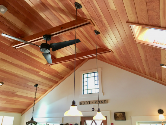 Boot Pond ceiling