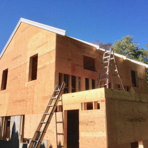 Whole house remodel- back (in progress)